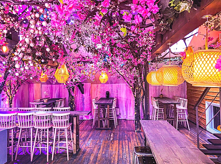 Electric Garden Our top floor bar the 'Electric Garden' is the perfect space to get away from it all. With it's own private entrance & bar.