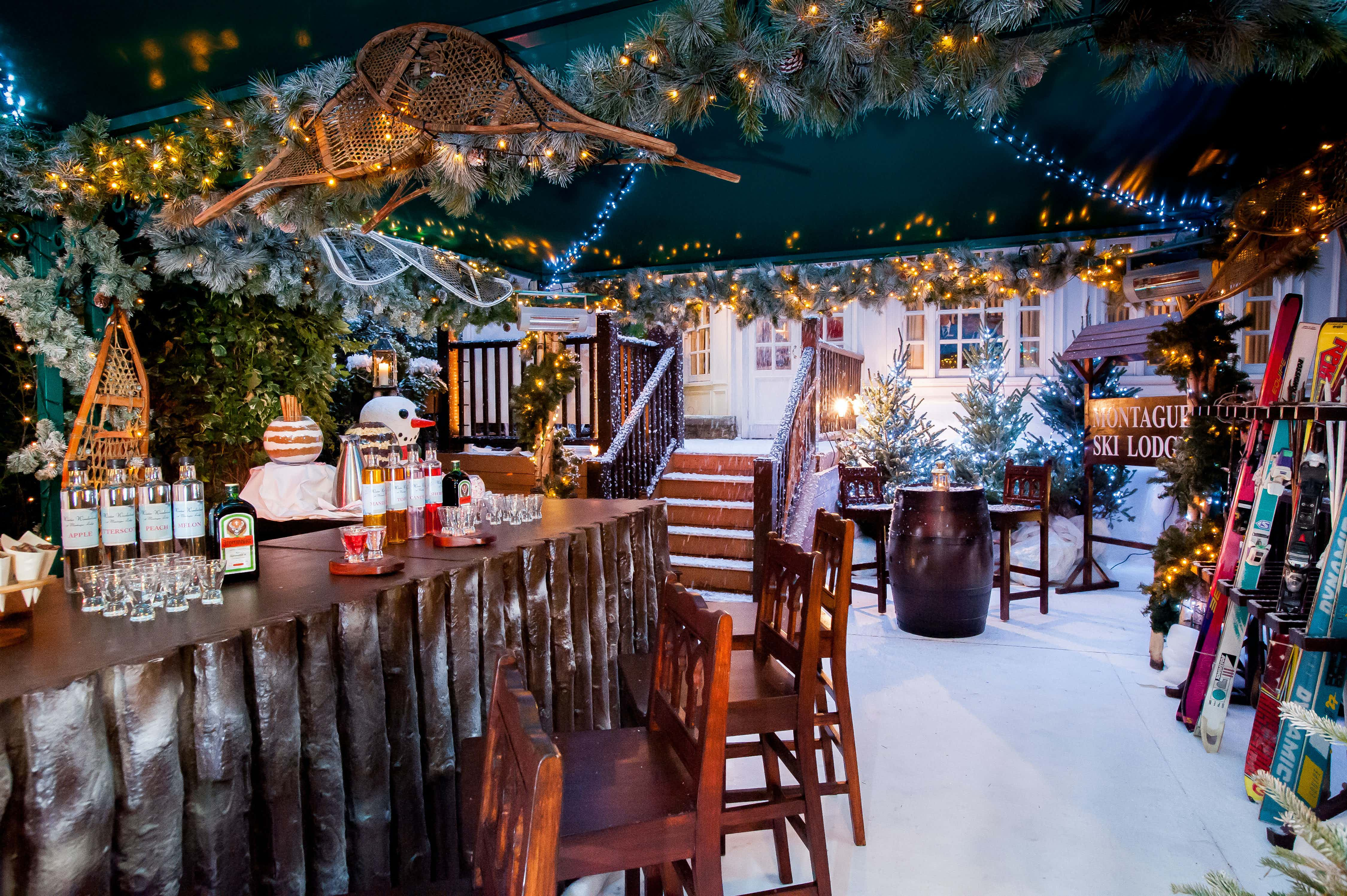 The Ski Lodge, The Montague on the Gardens