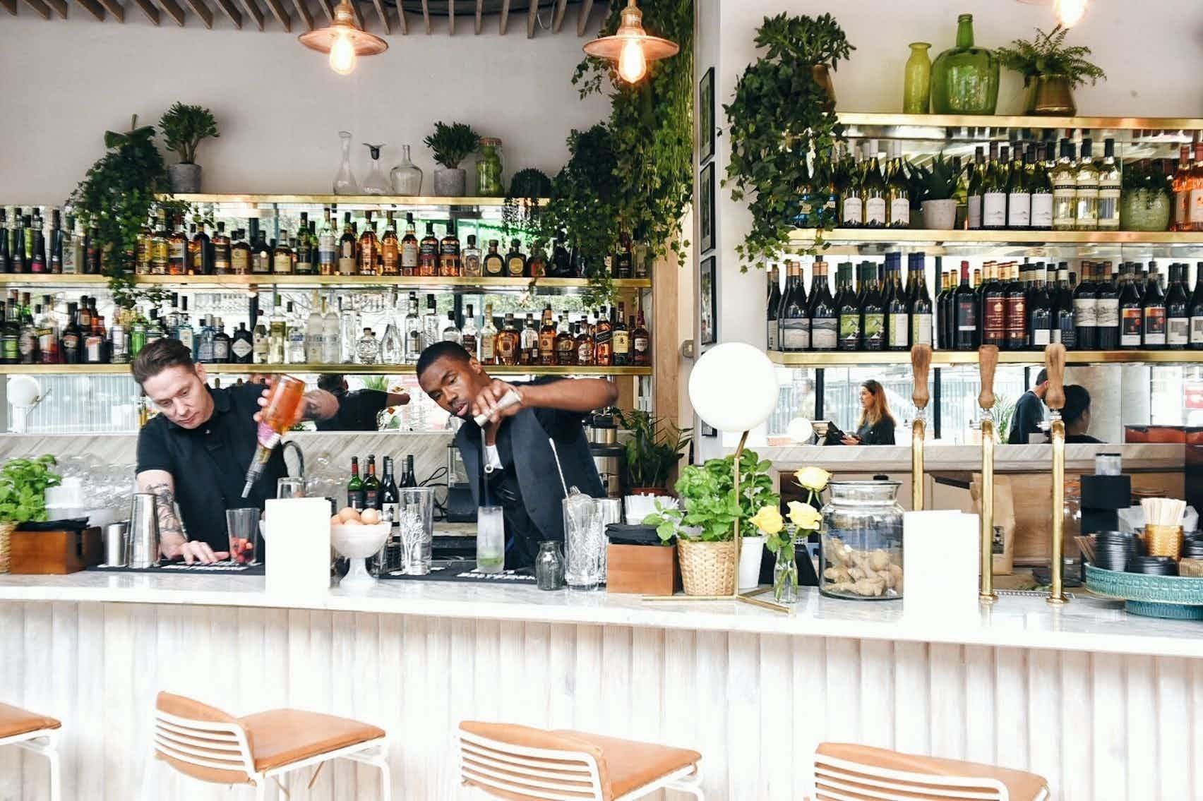 Bar Hire, Timmy Green