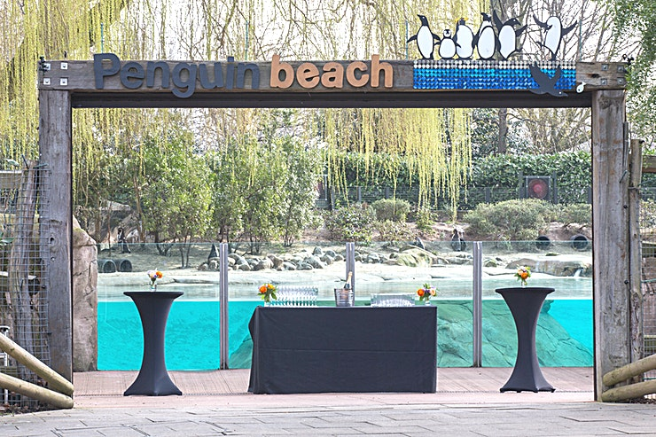 Penguin Beach **This is the Penguin Beach at ZSL London Zoo which is one of the most unique London venue to hire.**   England's biggest penguin pool is the perfect setting for your summer evening reception for up to 300 guests.  Penguin Beach recreates a South American beach landscape in the heart of London, with a stunning colony of Humboldt penguins. A cocktail and canapé reception or a summer BBQ in such scenery creates a tranquil atmosphere in the heart of the Zoo.