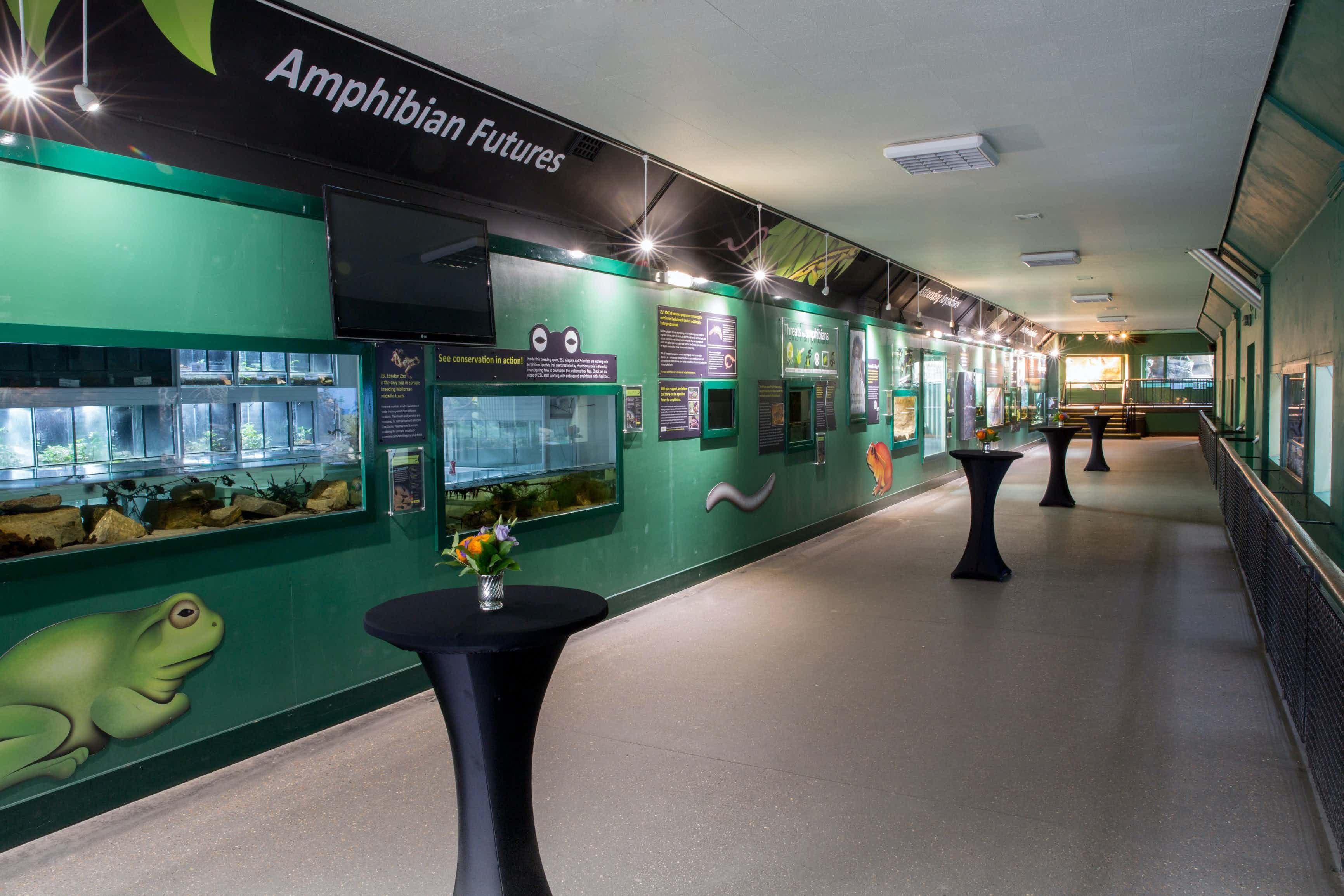 Amphibian and Reptile House, ZSL London Zoo