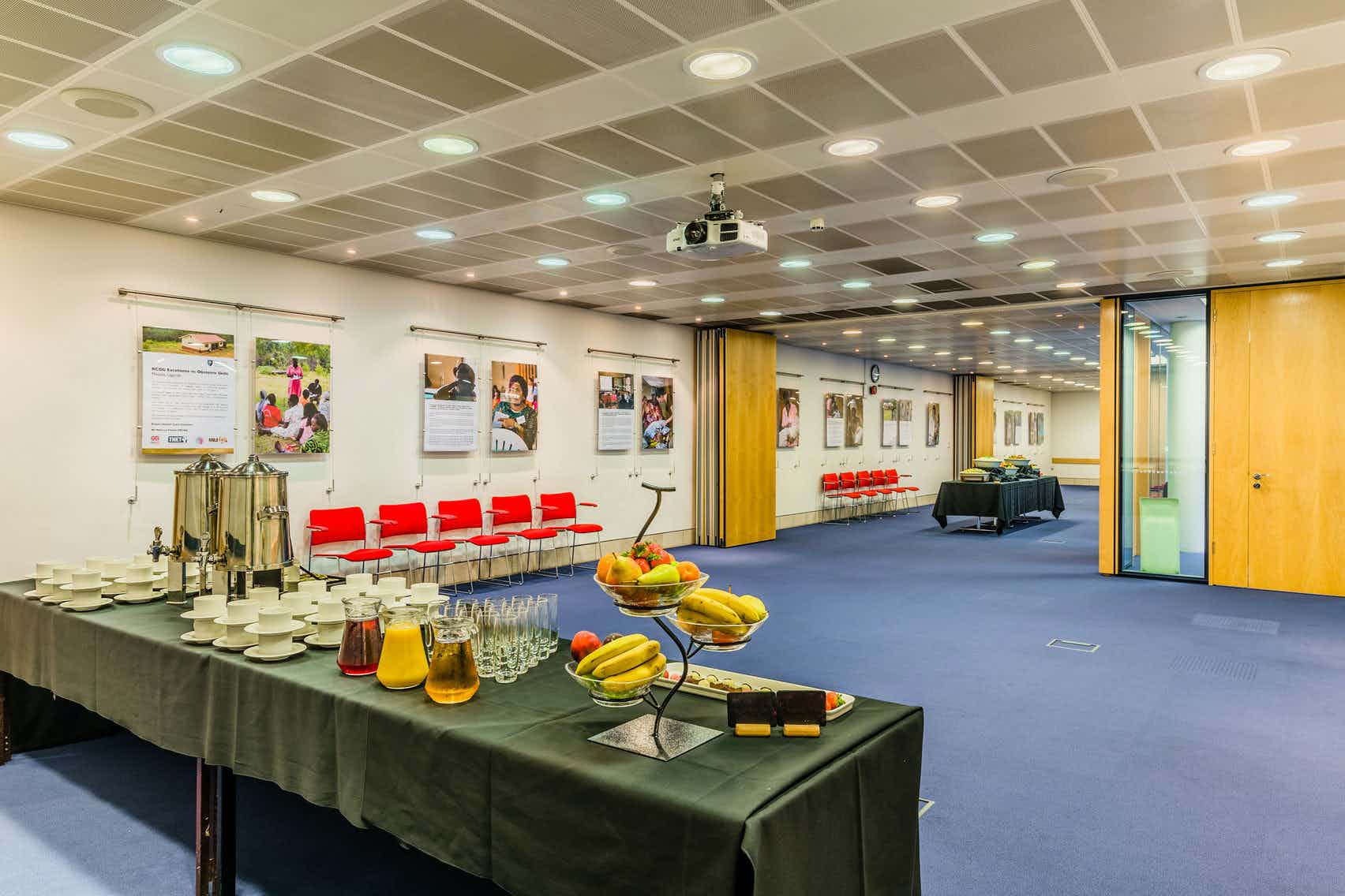 The Schering Health Care Suite, Rooms on Regent's Park