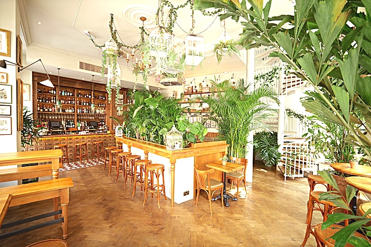 Whole Venue **Book Mr Fogg's House Of Botanicals for a unique venue hire in London.**   Book the whole bar at Mr Fogg's House Of Botanicals, a London venue filled with flora and fauna collected from around the world. Mr Fogg's House Of Botanicals is a venue created with the adventurous guest in mind.   It is located in the heart of Fitzrovia, and is the perfect venue to hire in London for a wide array of events whether that is a corporate function or a private party, Mr Fogg's House Of Botanicals can meet your unique event needs.