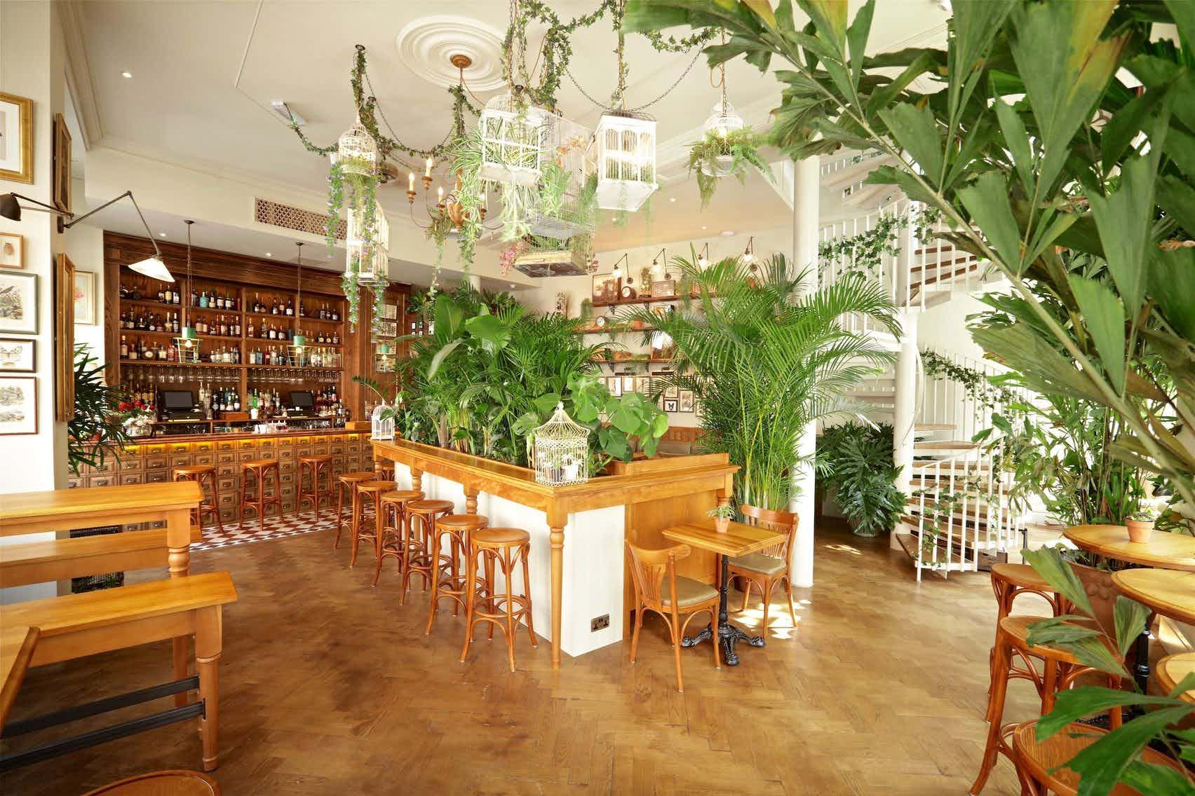 Whole Venue, Mr Fogg's House Of Botanicals