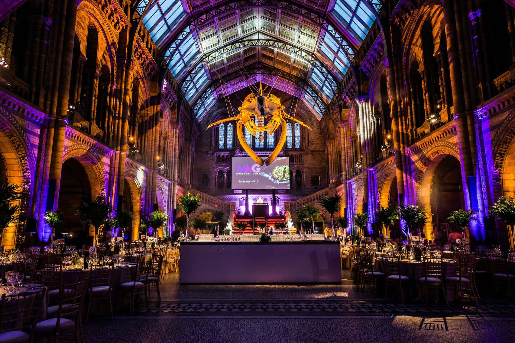Hintze Hall, Natural History Museum