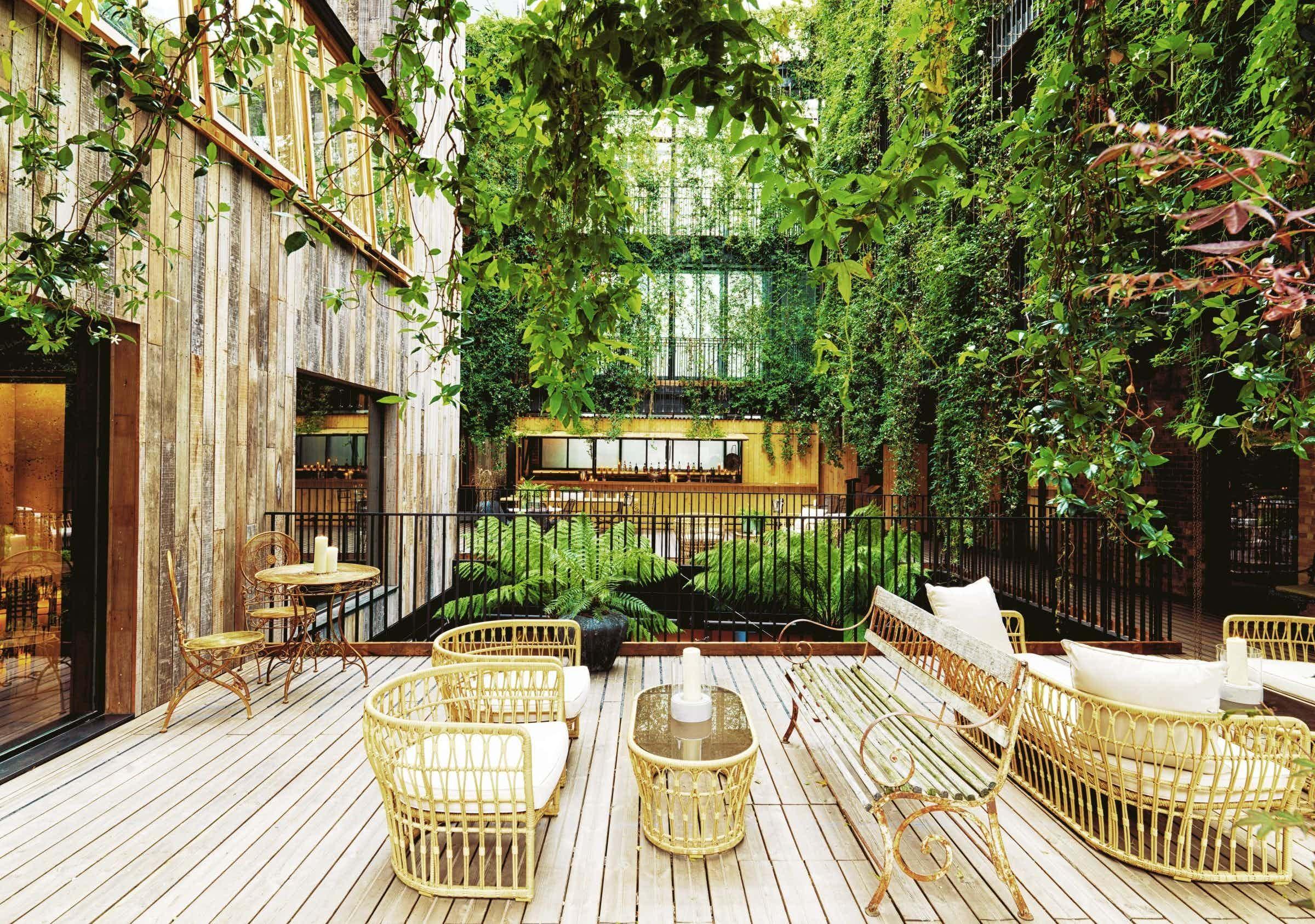 Jurema Terrace, The Mandrake