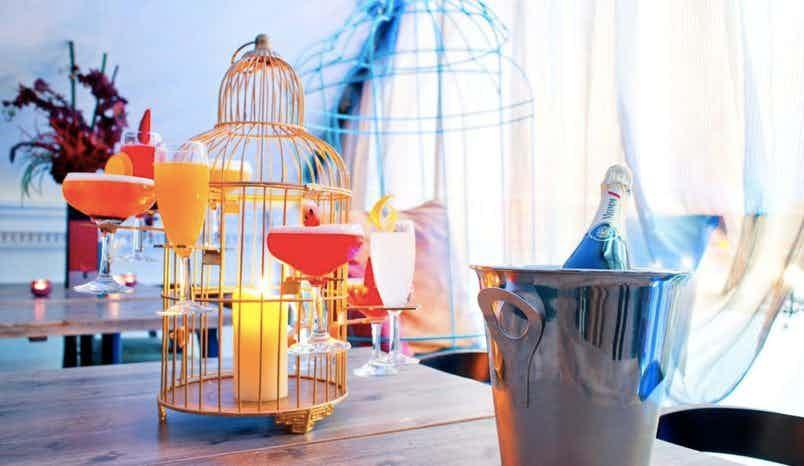 Penthouse, Hummingbird