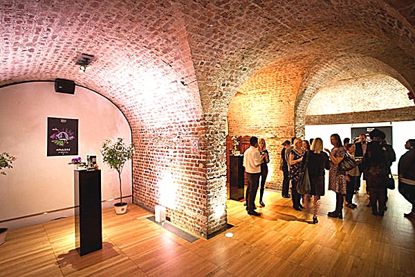 Vault 2 **Vault 2 is available to hire at RSA House. An atmospheric and unique venue, this is an exclusive space for a private party in London.**  Originally river-front warehouses, the Vaults display expos