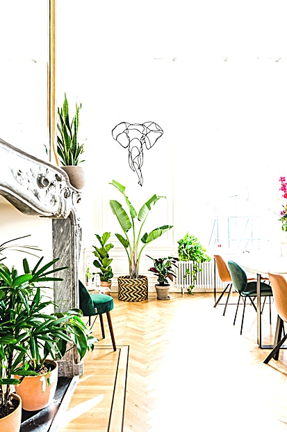 SPOT Studios **SPOT Studios is een veelzijdige, state-of-the-art vergaderruimte te huur in Amsterdam.**    Inspirerende locatie voor vergaderingen buiten uw kantoor, inclusief openslaande deuren naar een zonnige tuin.    SPOT Studios is gevestigd aan de Herengracht 498 op de begane grond van een prachtig, monumentaal grachtenpand.    Deze ruimtes zijn geschikt voor groepen tot 18 personen en beschikken onder andere over grote tafels, comfortabele stoelen, een lounge en veel planten.    Beide kamers hebben 5 meter hoge plafonds en beschikken over enorme schouwen met gouden spiegels. De ruimtes kunnen samen of afzonderlijk worden geboekt.