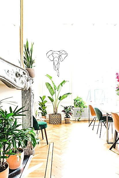 SPOT Studios **SPOT Studios is een veelzijdige, state-of-the-art vergaderruimte te huur in Amsterdam.**   Inspirerende locatie voor vergaderingen buiten uw kantoor, inclusief openslaande deuren naar een zonnige tuin.  SPOT Studios is gevestigd aan de Herengracht 498 op de begane grond van een prachtig, monumentaal grachtenpand.  Deze ruimtes zijn geschikt voor groepen tot 18 personen en beschikken onder andere over grote tafels, comfortabele stoelen, een lounge en veel planten.  Beide kamers hebben 5 meter hoge plafonds en beschikken over enorme schouwen met gouden spiegels. De ruimtes kunnen samen of afzonderlijk worden geboekt.