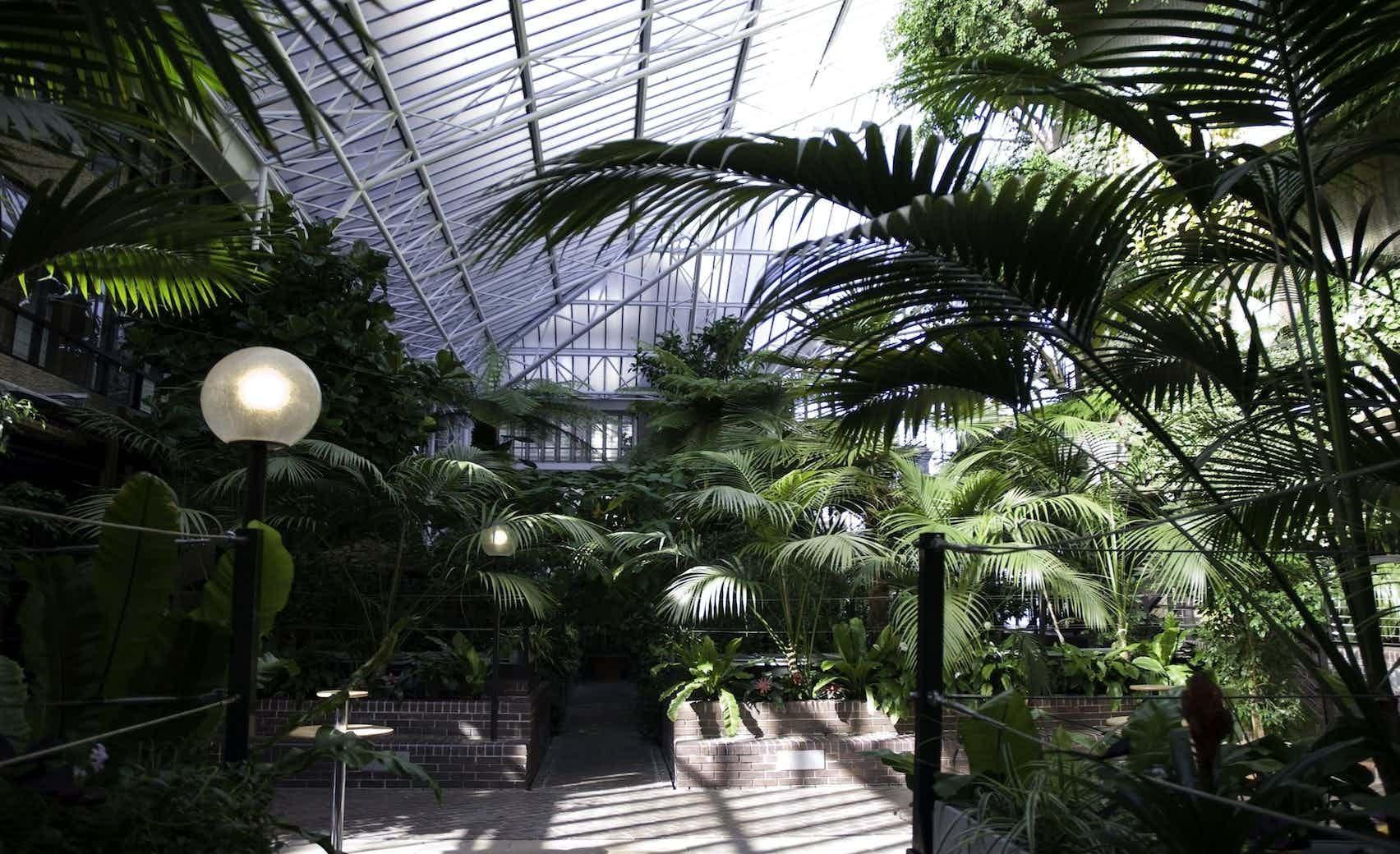 Conservatory, Barbican