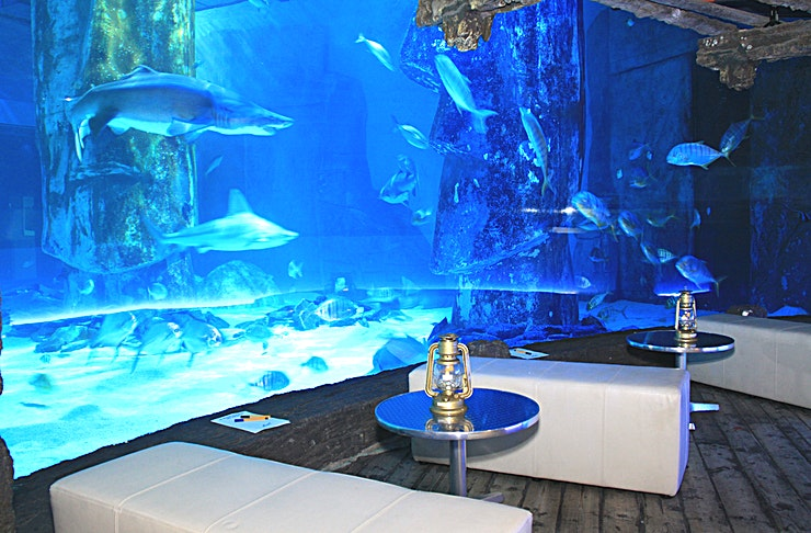 Venue Hire **Plunge down into the deep to London's only underwater venue.**
